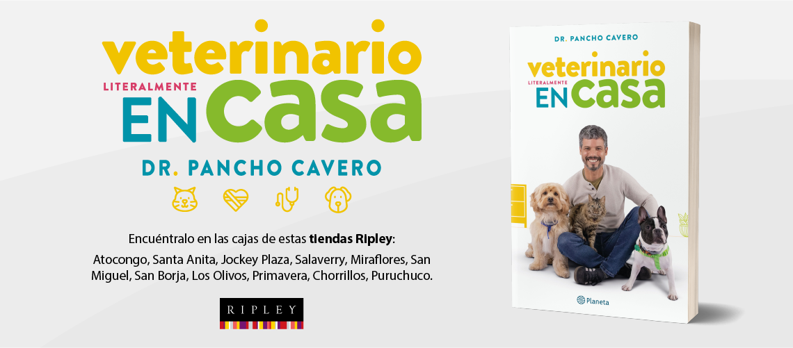 BRANDAY_VETERINARIO_LIT_ENCASA
